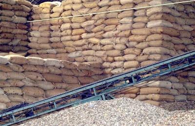 Cashew Company mejora entregas, Cadenas de Suministros